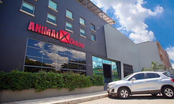 AnimalX: Desde $83.000 por mensualidad en AnimalX. Elige sede