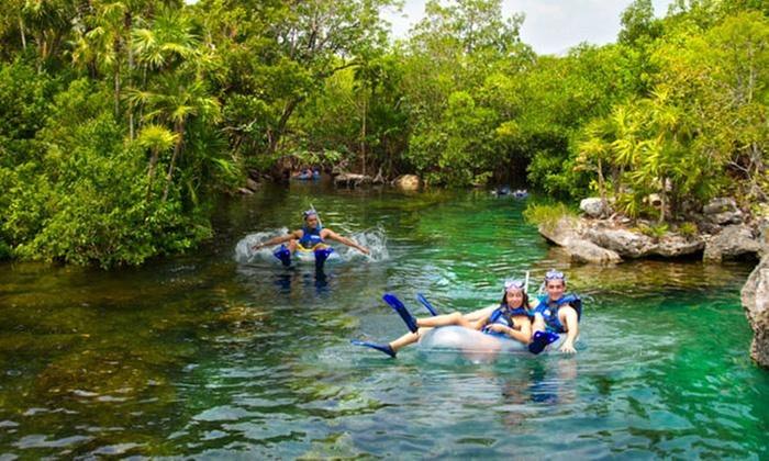 Delphinus Nado con Delfines: Riviera Maya: desde $1,173 por tour Xel-Há + alimentos + bebidas con y sin alcohol + nado con delfines en Delphinus