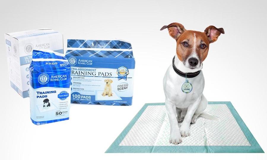 Groupon Shopping: Pack de 50, 100 o 150 unidades de toallas de entrenamiento y protección del hogar American Kennel Club. Incluye despacho
