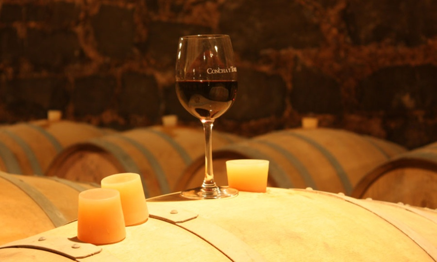 Viña Concha y Toro: Wine tour a elección con opción a botellas de Casillero del Diablo® y/o almuerzo