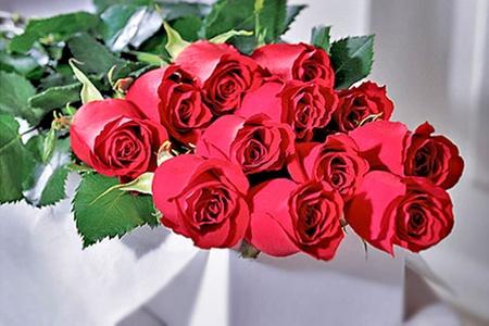 Love Roses: $12.600 en vez de $29.990 por caja de 12 rosas ecuatorianas en color a elegir con LoveRoses. Incluye despacho