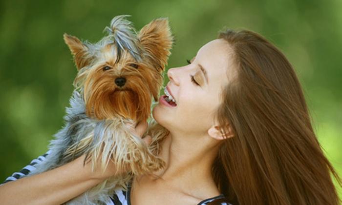 Vital Pets: Desde $19.600 por baño garrapaticida + test de control de peso + desparasitación en Vital Pets