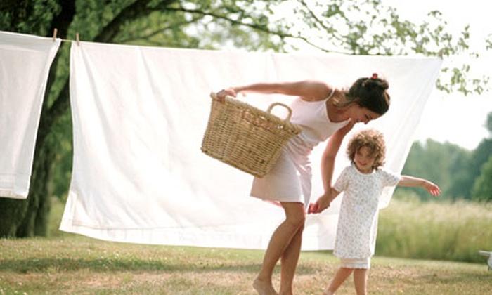 Groupon Shopping (Tendedero): Desde $129 por tendedero marca Rayen con envío. Elige modelo