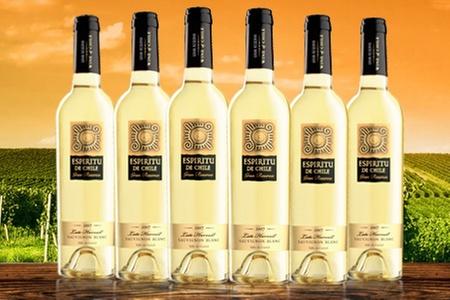 Aresti Wines of Chile: $11.990 en vez de $22.390 por 6 botellas de vino Gran Reserva Late Harvest 2007 Espíritu de Chile con Viña Aresti. Incluye despacho