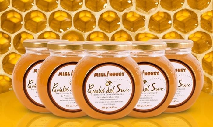 Panales del Sur: $9.990 en vez de $20.505 por 5 frascos de miel natural de avellano con Panales del Sur. Incluye despacho