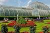 Kew Gardens Entrance Ticket