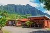 Oahu: North Shore & Dole Plantation Island Discover Tour