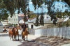 Ballarat and Sovereign Hill Day Tour with Optional Wildlife Park fr...