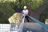 ABSEIL EXPERIENCE off Millers Dale Bridge THE BEST in Derbyshire & ...