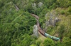 Cairns 4WD Waterfall and Rainforest Tour Including Kuranda Scenic R...