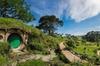Auckland to Rotorua via Waitomo Caves One-Way Private Tour