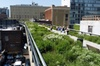 High Line and Hudson Yards Walking Tour