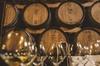 Degustazione di vini con cibo a San Gimignano
