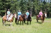 Phoenix Alliance dba. YD Guest Ranch - Vancouver: Horseback Riding in Ashcroft
