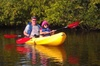 Kayak tours with Manatees and Dolphins