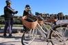 Tour per piccoli gruppi di mezza giornata di Roma con biciclette el...