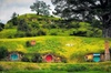Hobbiton Movie Set Luxury Tour from Auckland