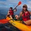 South Maui Kayak and Snorkel Tour with Turtles