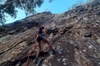 Noosa Hinterland Abseil Experience (Private)