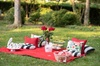 Private Picnic Experience in the Queen City