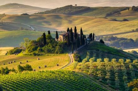 Tour di un giorno a Pisa, Siena e San Gimignano incluso pranzo