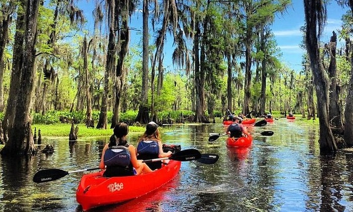 Swamp Tour New Orleans >> Manchac Swamp Mystic Wildlife Kayak Tour