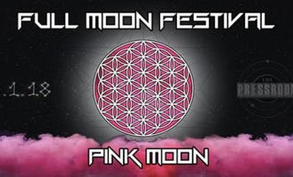 image for Full Moon Festival -- Pink Moon - Friday, Jun. 1, 2018 / 8:00pm