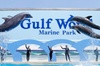 Skip the Line: Gulf World Marine Park General Admission Ticket