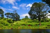 Day Tour Hobbiton + Rotorua from Auckland in Luxury Minibus + optio...