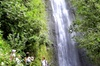 Manoa Waterfall Small-Group Adventure with Hidden Trail Hike