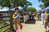 Hippy Trail Hinterland Tour from Byron Bay