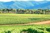 Excursion œnologique d'une journée autour d'Aix-en-Provence au dépa...
