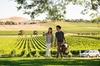 De Bortoli Yarra Valley Estate Gourmet Food and Wine Tasting Experi...