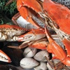 $10 For $20 Worth Of Fresh Seafood & Platters