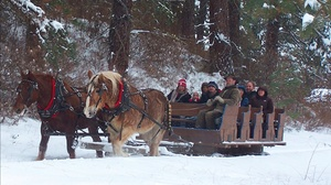 Leavenworth Sleigh Ride and Christmas Lights Festival at Leavenworth, plus 6.0% Cash Back from Ebates.