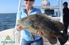 Private Fishing Charter - Catch, Clean, Cook