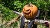 New York Botanical Garden - Bronx Park: Scarecrow Nights - Saturday October 29, 2016 / 7:15pm