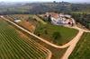 Viaje de 3 horas de viticultura y cata de vinos desde Barcelona