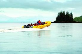 Ketchikan Rainforest Nature Walk and Sightseeing Cruise at Alaska Travel Adventures Inc., plus 6.0% Cash Back from Ebates.