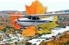 Niagara Falls Air Tours Inc. - St Catharines-Niagara: Fall Colors Air Tour in Niagara