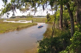Kayaking and Wildlife Tour of First Landing State Park at Chesapean Outdoors, plus 6.0% Cash Back from Ebates.