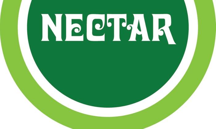 Nectar Lounge at Nectar Lounge