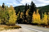 Private tour of the foothills of Denver, Dillon and Breckenridge or...