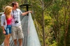Skip the Line: Otway Fly Treetop Adventures Treetop Walk Admission ...