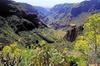 Excursión para grupos pequeños a los tesoros de Gran Canaria