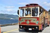 Totems, City & Wildlife by Cable Car Trolley