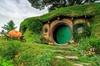 6.5hr Hobbiton Movie Set Tour