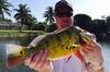 Half Day Bass Fishing Trip near Boca Raton