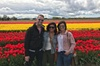 Skagit Valley Tulip Festival Tour with Local Wine & Cheese from Sea...