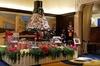 Chicago Christmas Magnificent Mile Tour